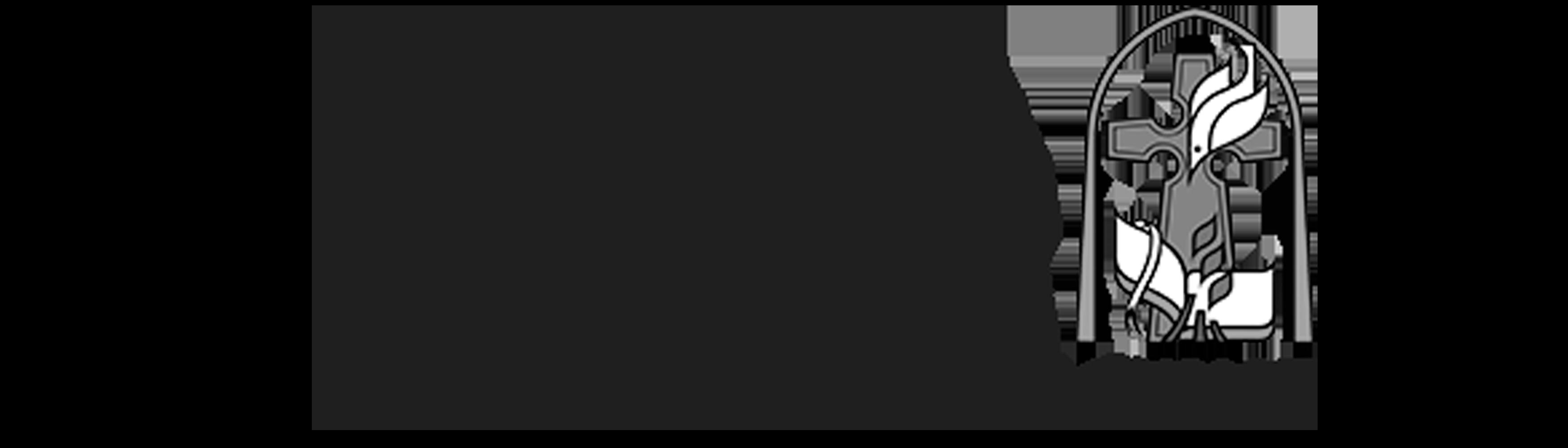 1 IPI